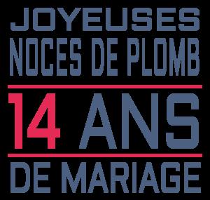 Joyeuses noces de plomb pour votre 14e année de mariage